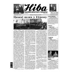 Niva 42/2007 (2684)