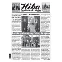 Niva 41/2015 (3100)
