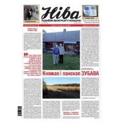 Niva 42/2014 (3049)