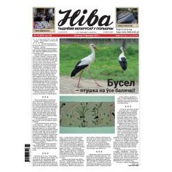 Niva 15/2021 (3387)